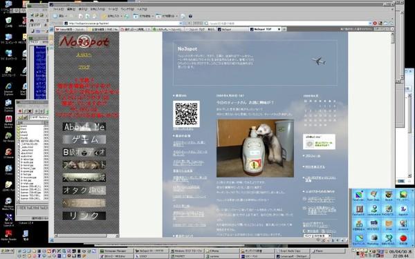 Screen20090430